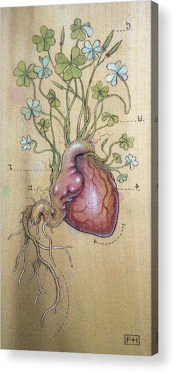 Clover Acrylic Print featuring the pyrography Clover Heart by Fay Helfer