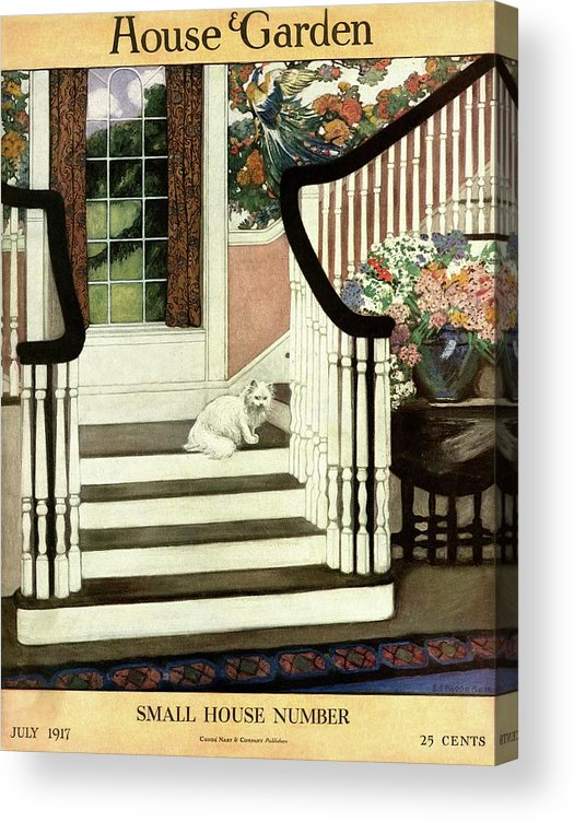 Animal Acrylic Print featuring the photograph A House And Garden Cover Of A Cat On A Staircase by Ethel Franklin Betts Baines