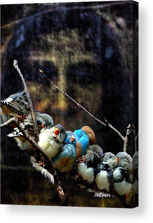 His Eye Is On The Sparrow Acrylic Print featuring the digital art His Eye Is On The Sparrow by Seth Weaver