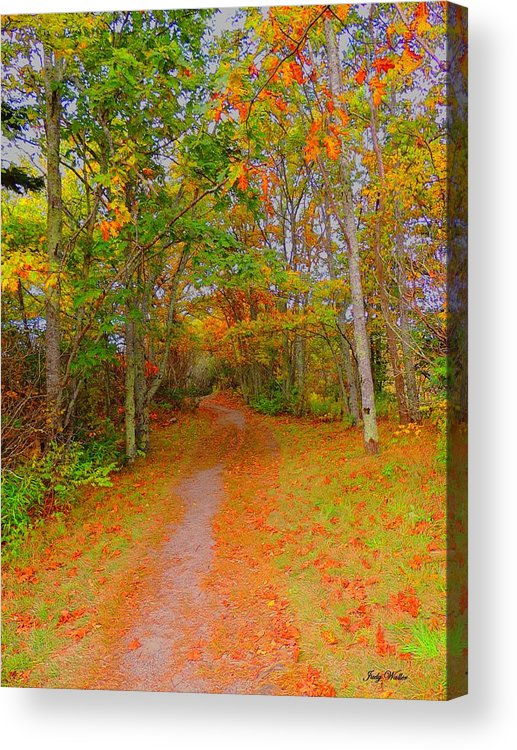 Autumn Acrylic Print featuring the photograph In Beauty I Walk by Judy Waller