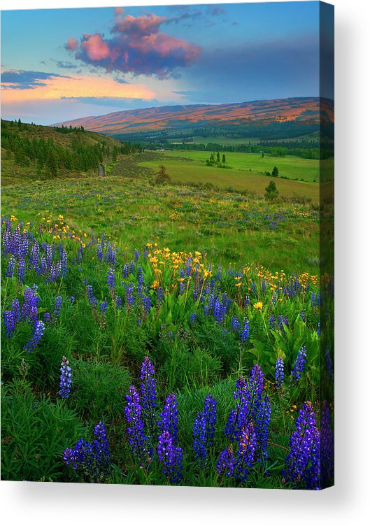 Spring Storm Acrylic Print featuring the photograph Spring Storm Passing by Mike Dawson