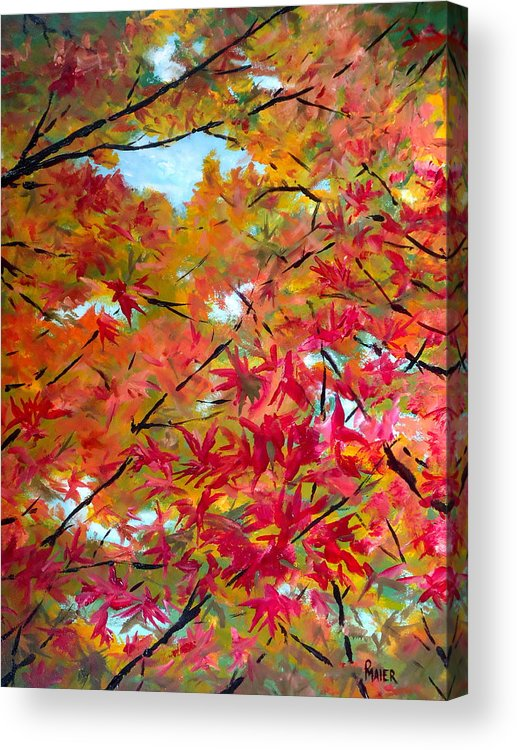 Fall Acrylic Print featuring the painting Looking Up II by Pete Maier