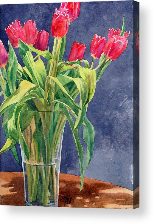 Peter Sit Watercolor Acrylic Print featuring the painting Red Tulips by Peter Sit