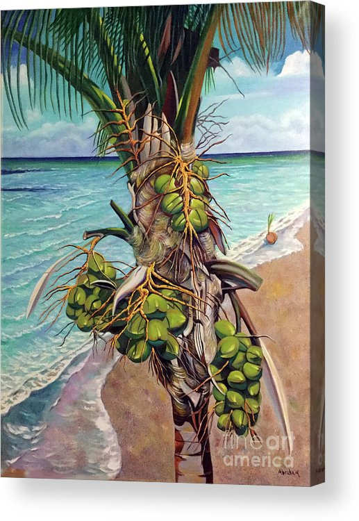 Coconuts Acrylic Print featuring the painting Coconuts on beach by Jose Manuel Abraham