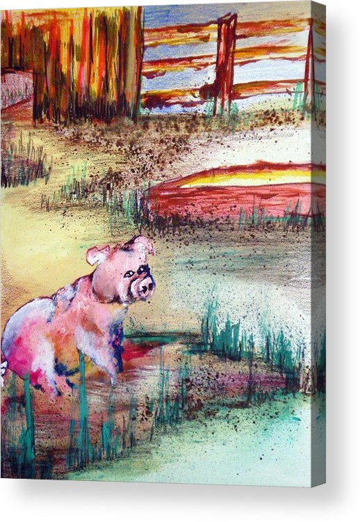 Pig Piglet Acrylic Print featuring the painting Farm Piggy by Tammera Malicki-Wong