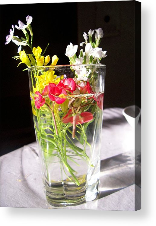 Flower Acrylic Print featuring the photograph A Child's Offering by Caroline Eve Urbania