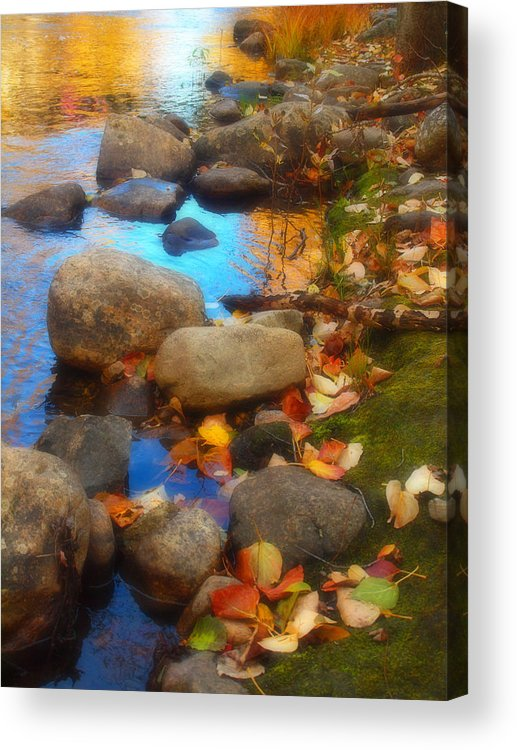 Autumn Acrylic Print featuring the photograph Autumn By The Creek by Tara Turner