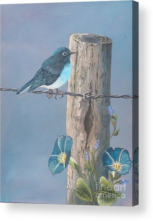 Bluebird Acrylic Print featuring the painting Bluebird by John Wise