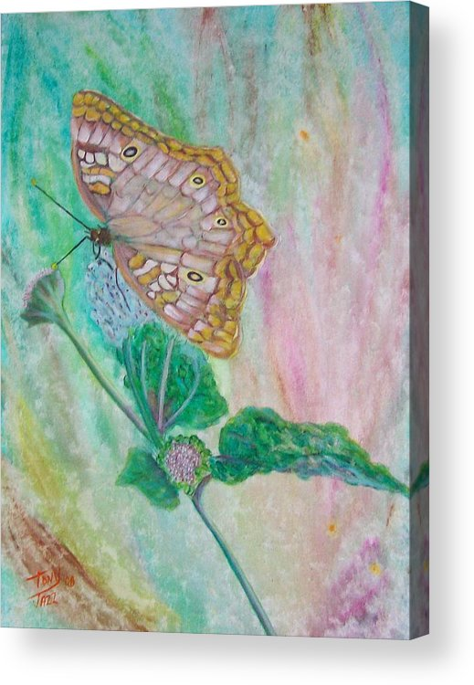 Butterfly Acrylic Print featuring the painting Butterfly by Tony Rodriguez