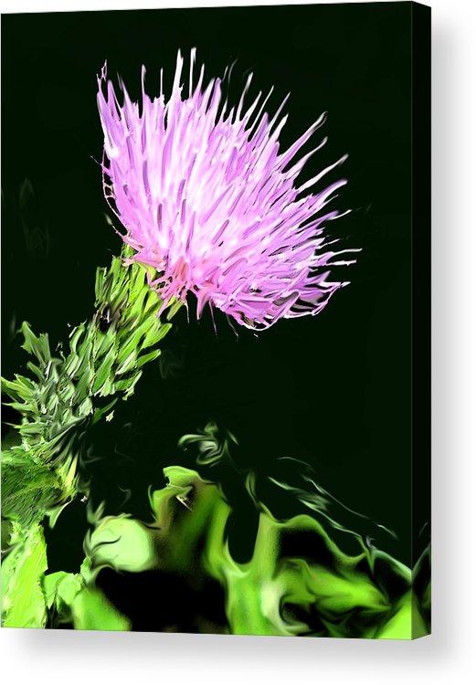 Weed Acrylic Print featuring the digital art Common Weed by Ian MacDonald
