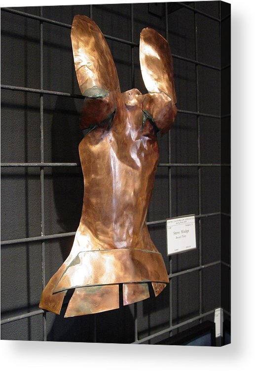 Breastplate Acrylic Print featuring the photograph Copper Breast Plate by Steve Mudge