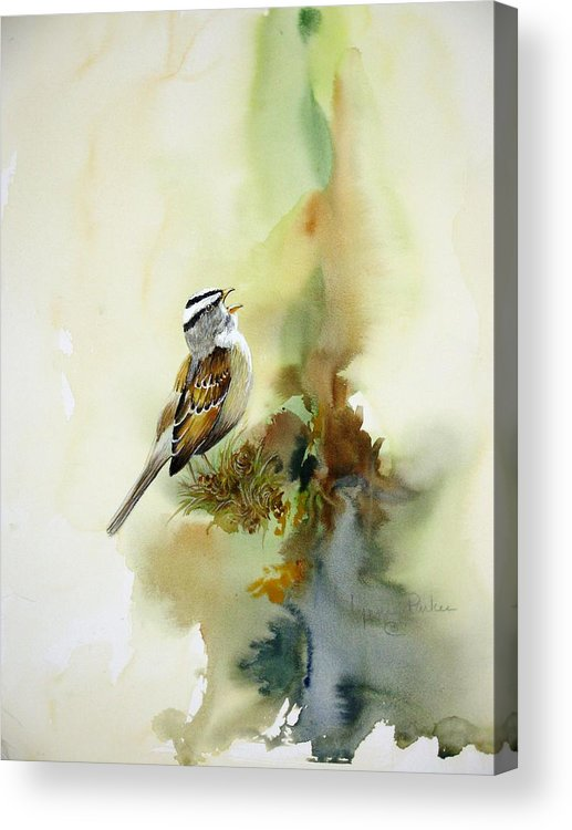White-crowned Sparrow Acrylic Print featuring the painting Happy Sparrow by Lynne Parker