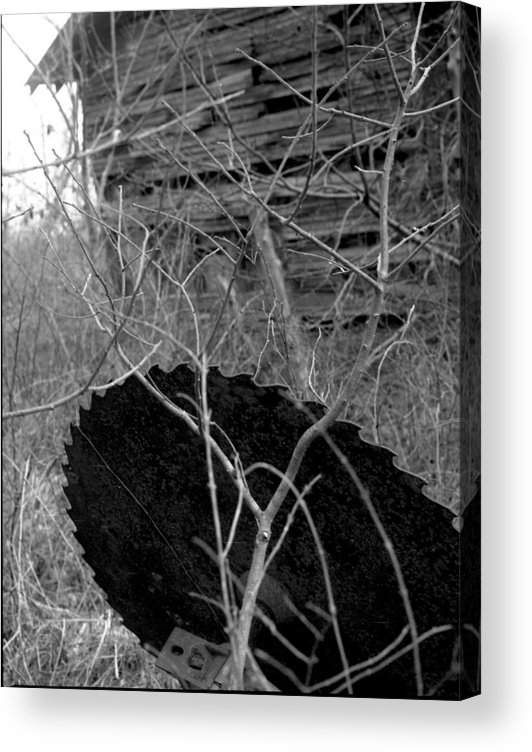 Ansel Adams Acrylic Print featuring the photograph House-saw-old by Curtis J Neeley Jr