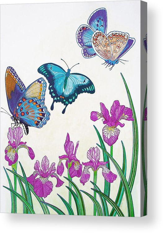 Butterflies Acrylic Print featuring the painting Rhapsody in Blue by Vlasta Smola