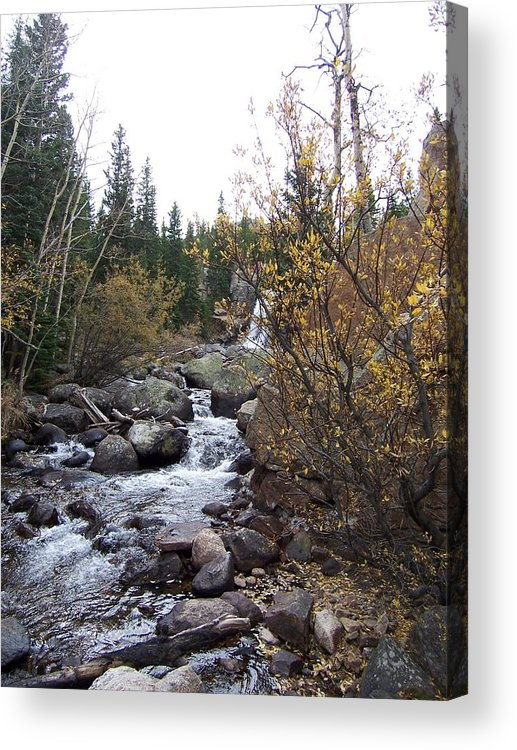 Landscape Acrylic Print featuring the photograph Waterfall by Lisa Gabrius