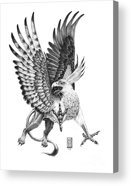 Mythology Acrylic Print featuring the drawing Whitehead Griffin by Melissa A Benson