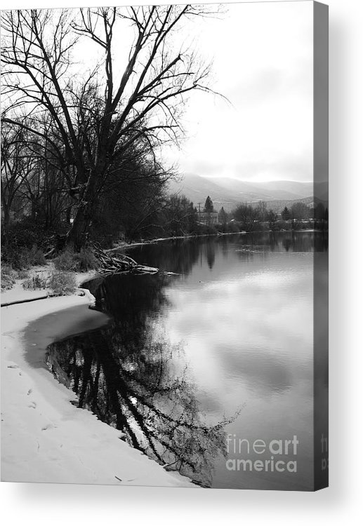 Black And White Acrylic Print featuring the photograph Winter Tree Reflection - Black and White by Carol Groenen