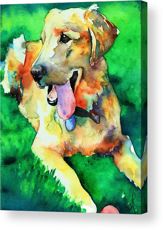 Yellow Lab Acrylic Print featuring the painting Yellow Labrador by Christy Freeman Stark