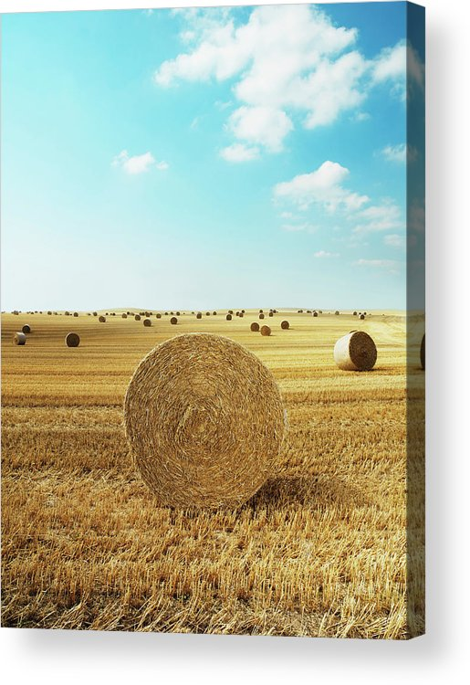 Field Stubble Acrylic Print featuring the photograph Bales Of Hay In Harvested Field by Henrik Sorensen