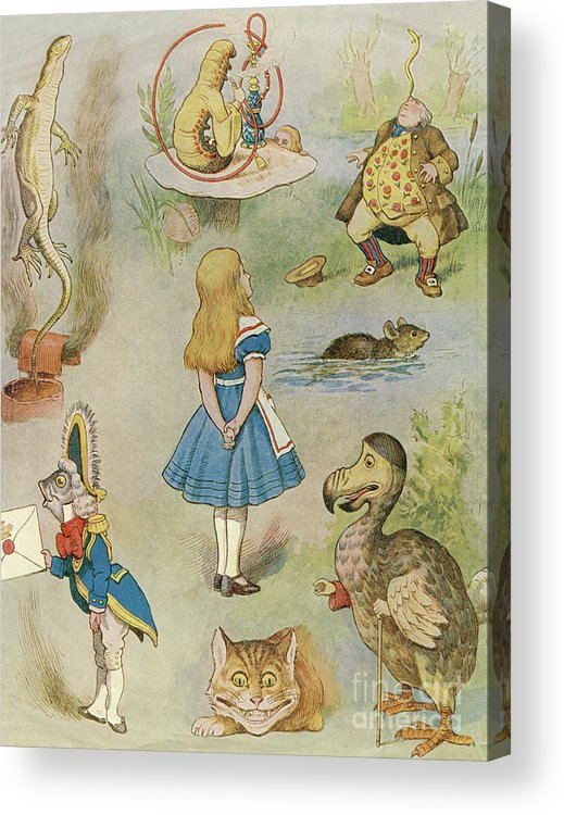 Alice Acrylic Print featuring the drawing Characters from Alice in Wonderland by John Tenniel