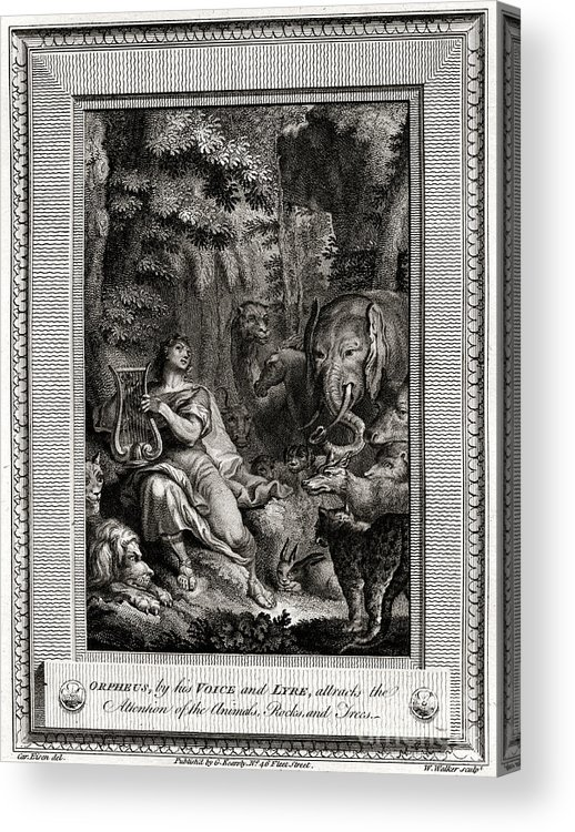 Singer Acrylic Print featuring the drawing Orpheus, By His Voice And Lyre by Print Collector