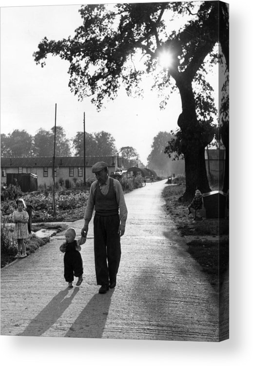Toddler Acrylic Print featuring the photograph Walking In Sunshine by Bert Hardy