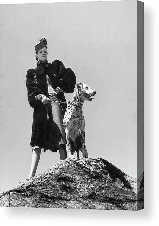 Dog Acrylic Print featuring the photograph Model With Dalmation by Toni Frissell