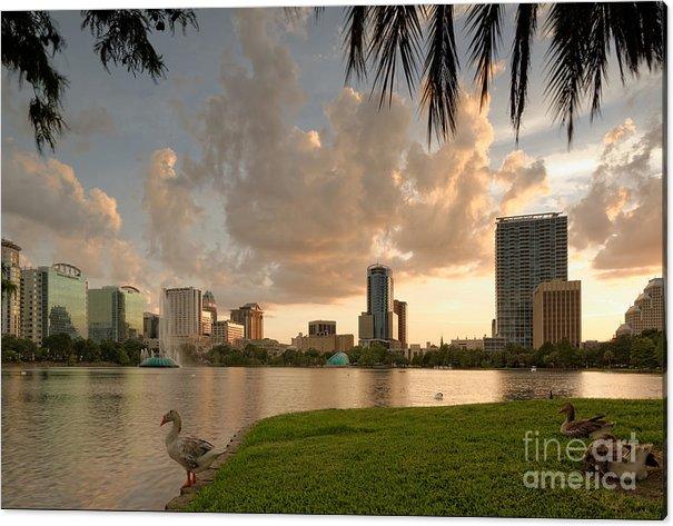 Downtown Orlando Skyline Lake Eola Sunset by Silvio Ligutti