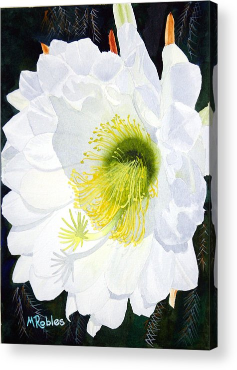 Flower Acrylic Print featuring the painting Cactus Flower II by Mike Robles