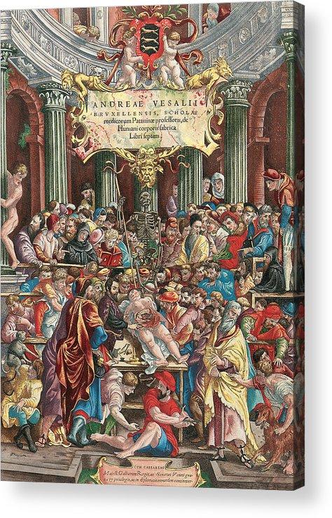 Andreas Vesalius Acrylic Print featuring the painting Frontispiece To De Humani Corporis Fabrica Libri Septem by Venetian School
