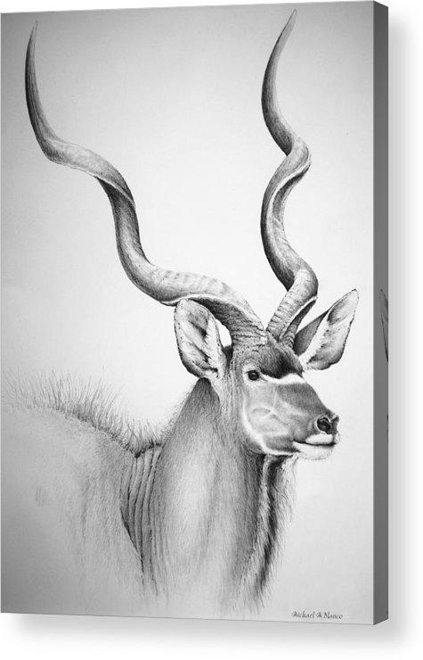 Kudu Acrylic Print featuring the digital art Kudu Bull by Michael Blanco