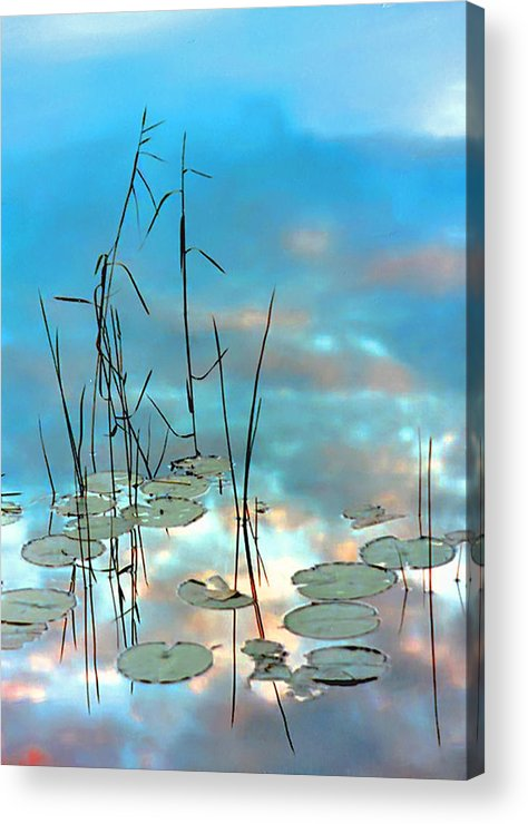 Acrylic Print featuring the photograph Reflection - Reeds And Pond Lilies by Thomas J Martin