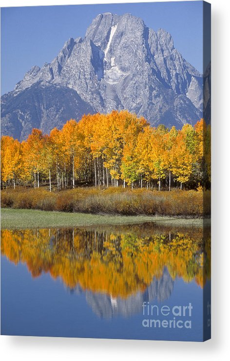 Bronstein Acrylic Print featuring the photograph Reflection At Oxbow Bend by Sandra Bronstein