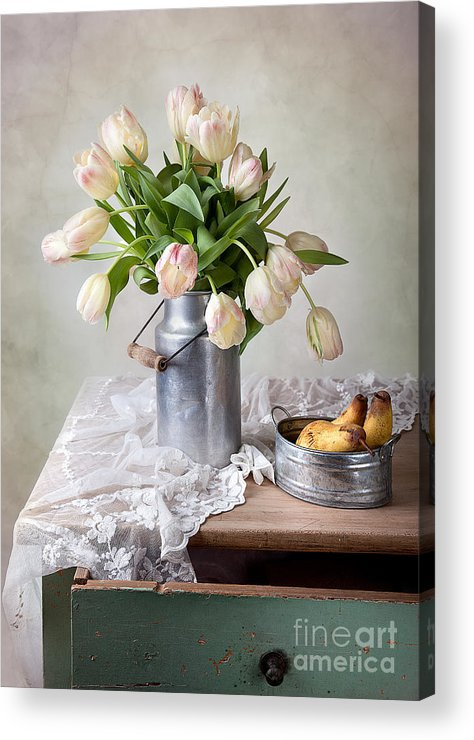 Tulip Acrylic Print featuring the photograph Tulips And Pears by Nailia Schwarz