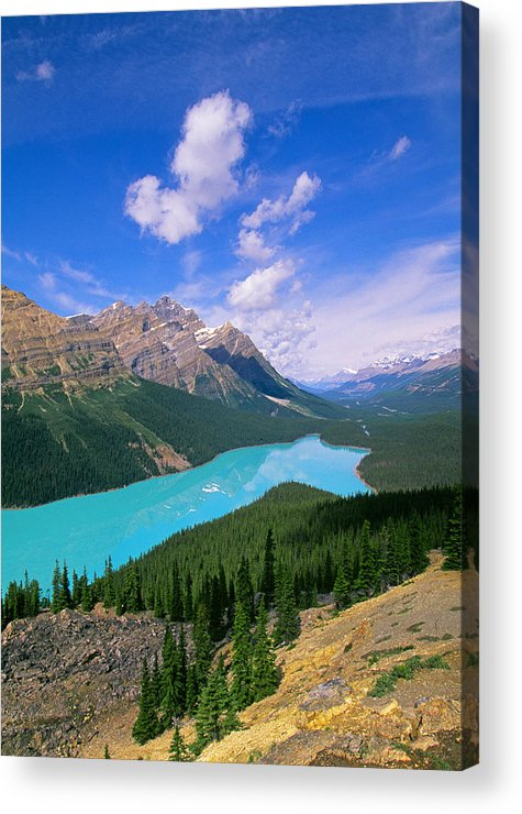 Peyto Acrylic Print featuring the photograph Peyto Lake, Banff National Park by Buddy Mays