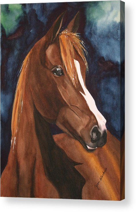 Horse Acrylic Print featuring the painting Bay On Blue 2 by Jean Blackmer