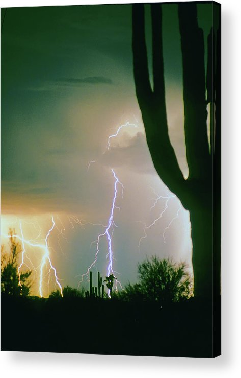 Lightning Acrylic Print featuring the photograph Giant Saguaro Cactus Lightning Storm by James BO Insogna