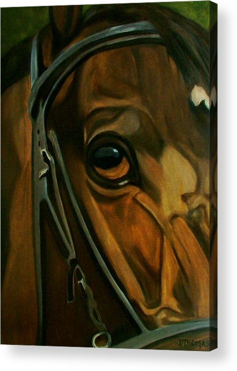 Horse Acrylic Print featuring the painting Head Stall by Donna Thomas