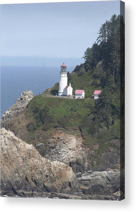 Lighthouse Acrylic Print featuring the photograph Heceta Head Lighthouse Li 9000 by Mary Gaines