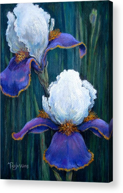 Floral Acrylic Print featuring the painting Irises by Tanja Ware