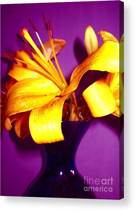 Acrylic Print featuring the photograph Opposites Attract by Miss McLean