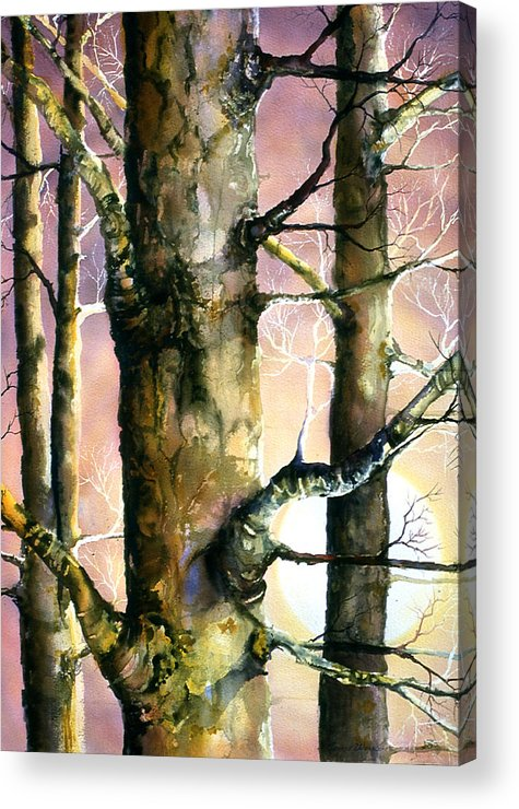 Trees Acrylic Print featuring the painting Sunset Forest by Connie Williams