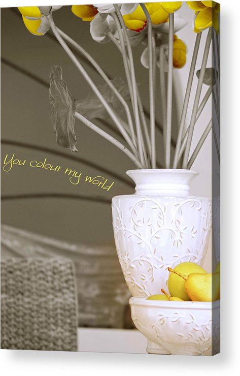 Still Life Acrylic Print featuring the photograph You Color My World by Holly Kempe