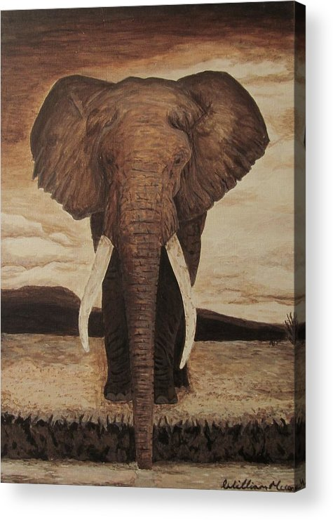Africa Elephant Acrylic Painting Acrylic Print featuring the painting African Elephant by William McCann
