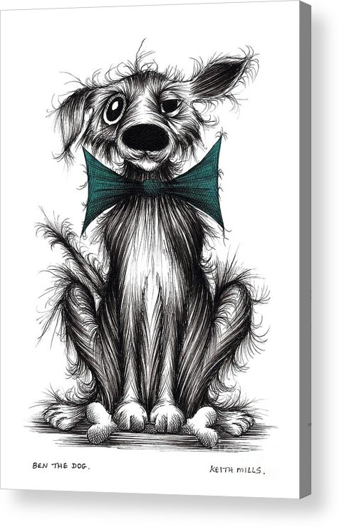 Dog In Bow Acrylic Print featuring the drawing Ben The Dog by Keith Mills