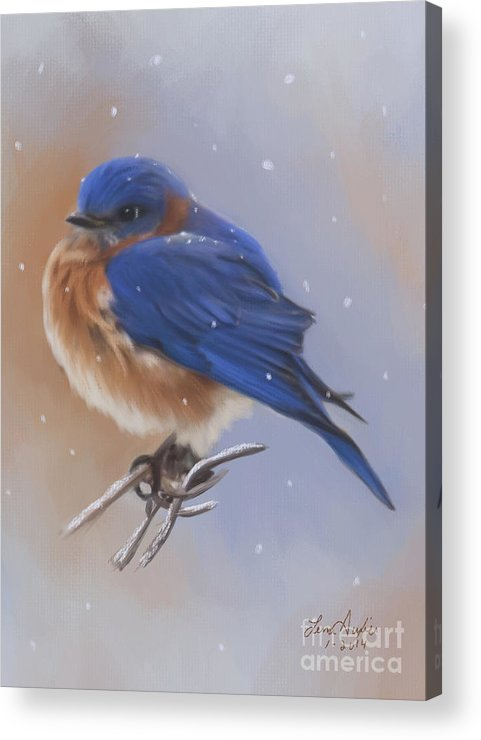 Bluebird Acrylic Print featuring the digital art Bluebird In The Snow by Lena Auxier