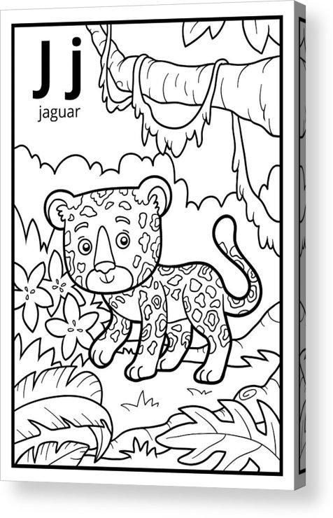 Coloring Book, Colorless Alphabet. Letter J, Jaguar Acrylic Print by ...
