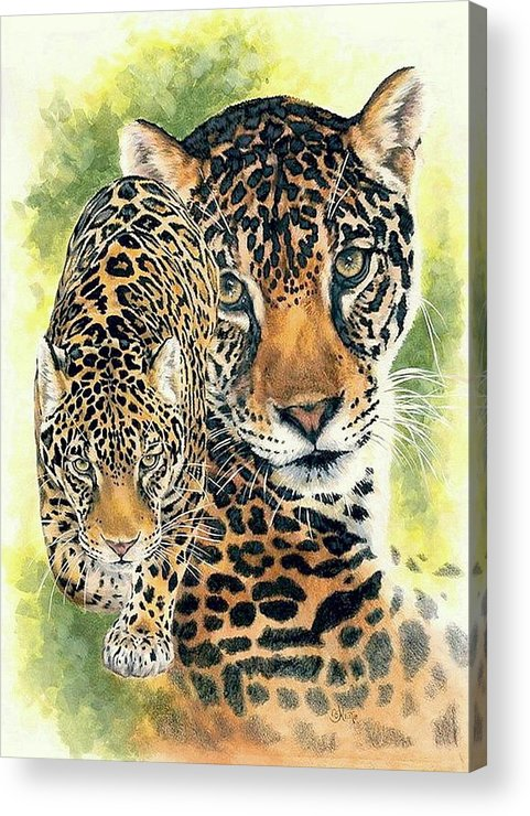 Jaguar Acrylic Print featuring the mixed media Compelling by Barbara Keith