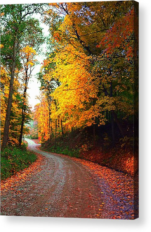 Country Acrylic Print featuring the photograph Country Autumn Gravel Road by Julie Dant