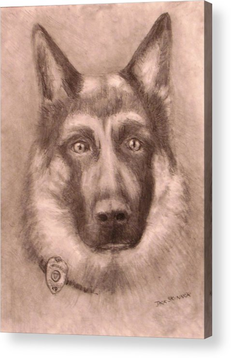 Pencil Drawing Acrylic Print featuring the drawing Honor by Jack Skinner